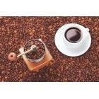 커피 904