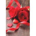 발렌타인데이 364