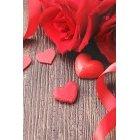 발렌타인데이 362