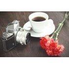 꽃 1403