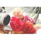 꽃 1391