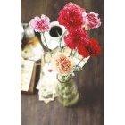 꽃 1350