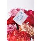 꽃 1588