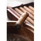 담배 441