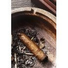 담배 436