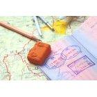 여권 11