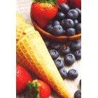 과일 이미지24