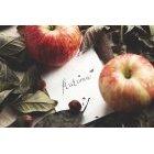 사과 339