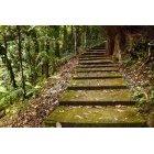 계단 193