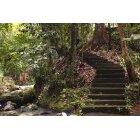 계단 198