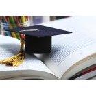 교육 1161