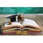 교육 1385