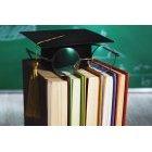 교육 1351