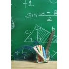 교육 1303