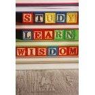 교육 1421