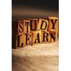 교육 1396