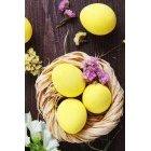계란 195