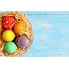 계란 157