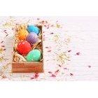 계란 269