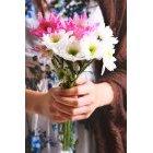 꽃 2881