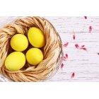 계란 252