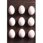 계란 273