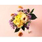 꽃 3296