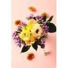 꽃 3295