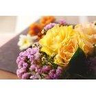 꽃 3292