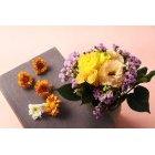 꽃 3286