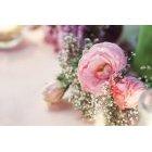 꽃3498