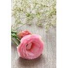 꽃3597